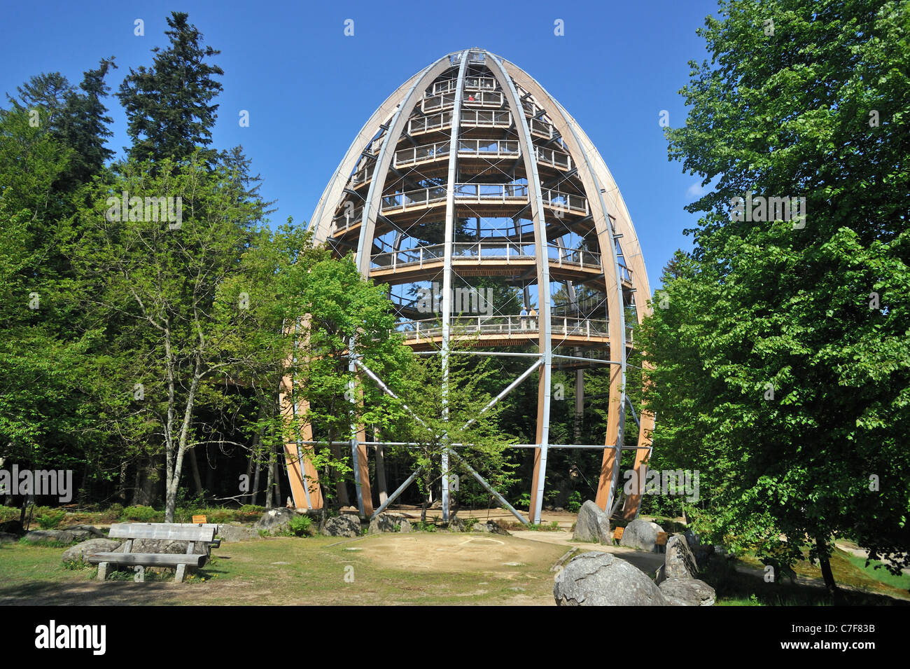 Baumwipfelpfad, a wooden tower construction of the world´s longest tree top walk in the Bavarian Forest National - Stock Image