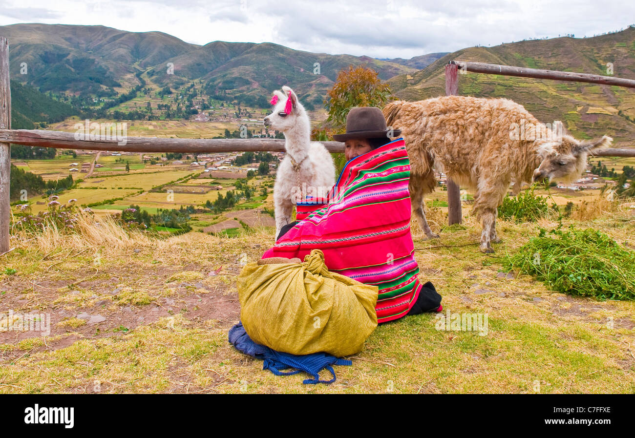 Peruvian woman in traditional colorful clothes seat with here alpacas near a village in the sacred valley , Peru - Stock Image