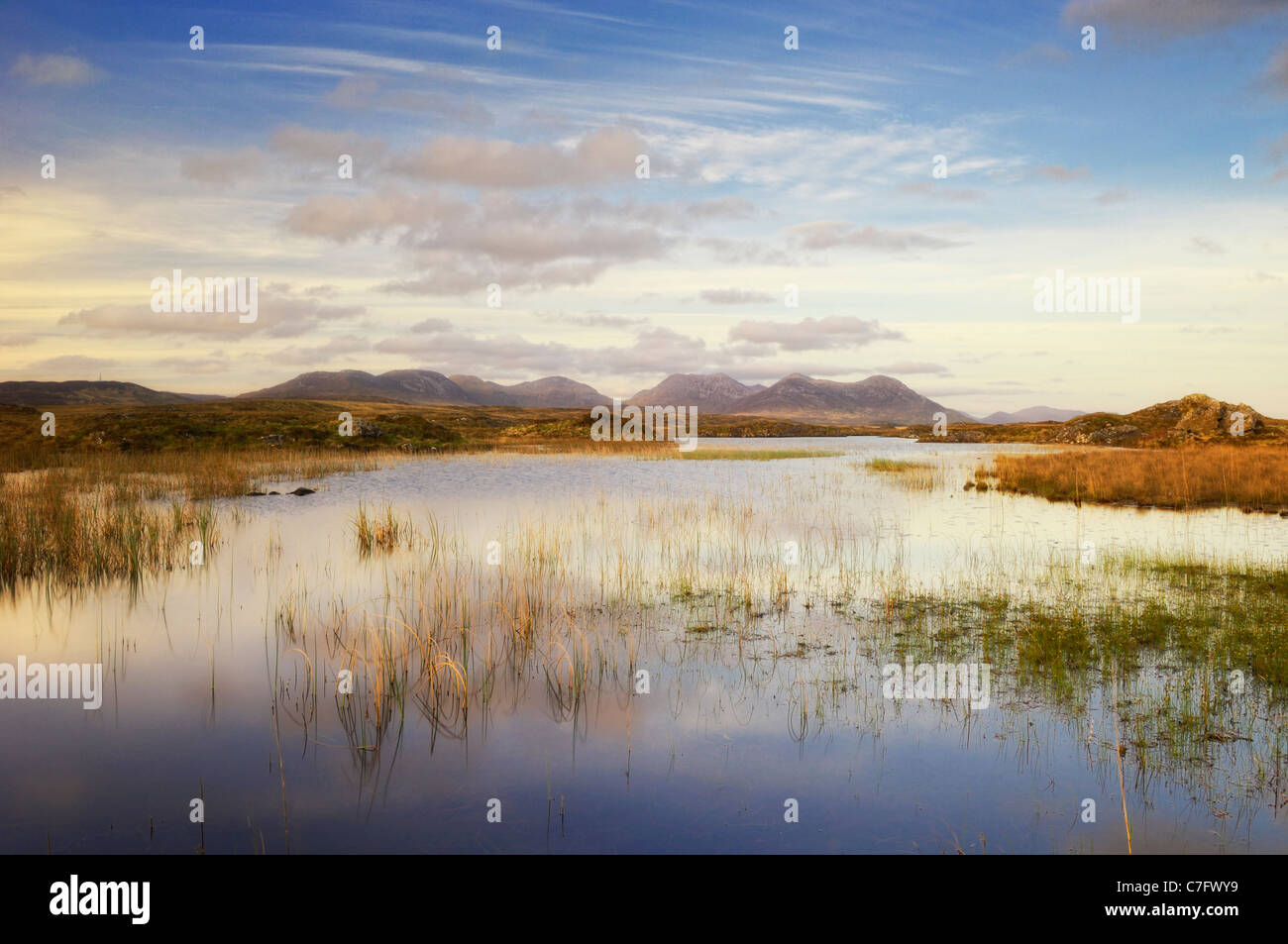 Bog landscape with the 12 Bens mountain range in the background - Connemara, County Galway, Ireland - Stock Image