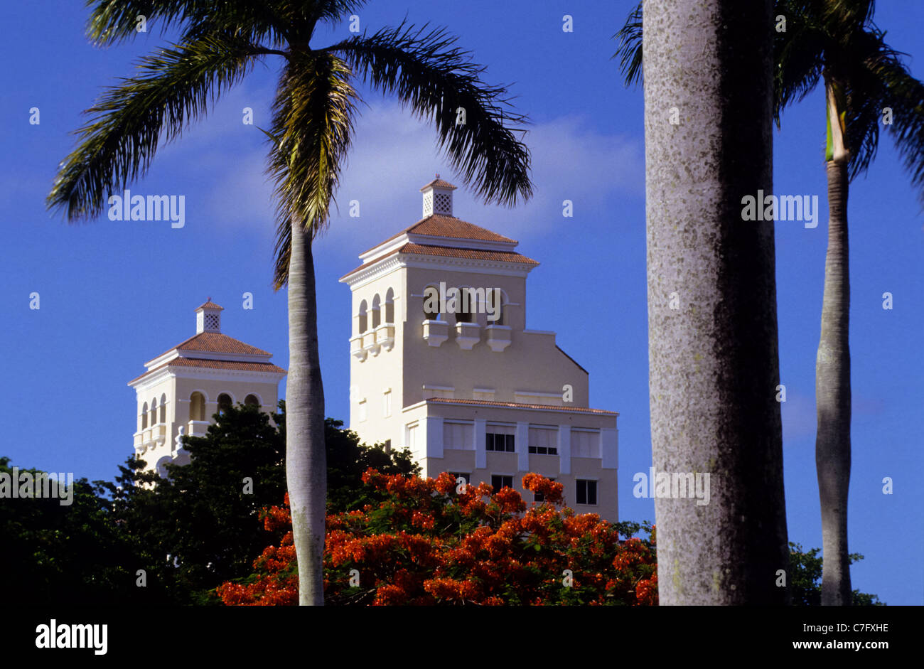 Luxury hotel between palm trees in Florida, USA - Stock Image