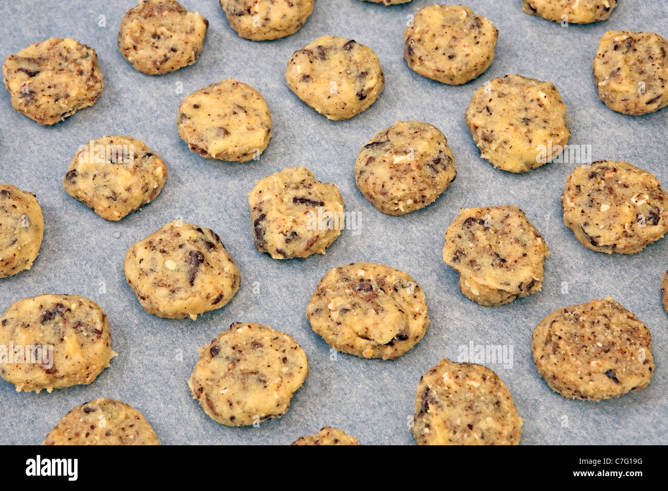 unbaked chocolate cookies on a baking sheet - Stock Image