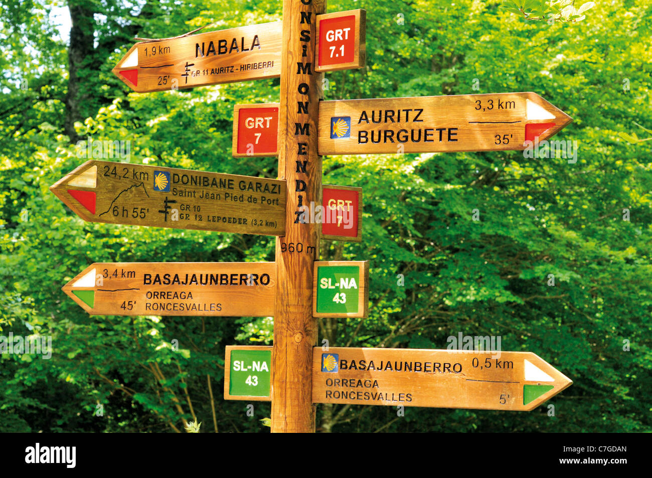 Spain, St. James Way: Walking Way indications in the forest of Roncesvalles - Stock Image