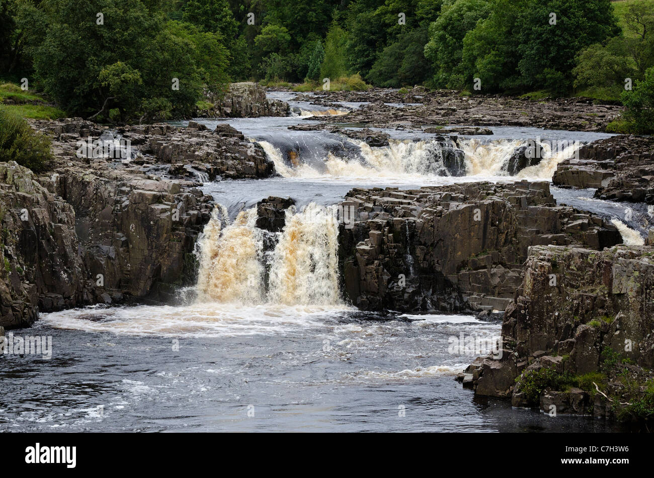 Low Force waterfall - Stock Image