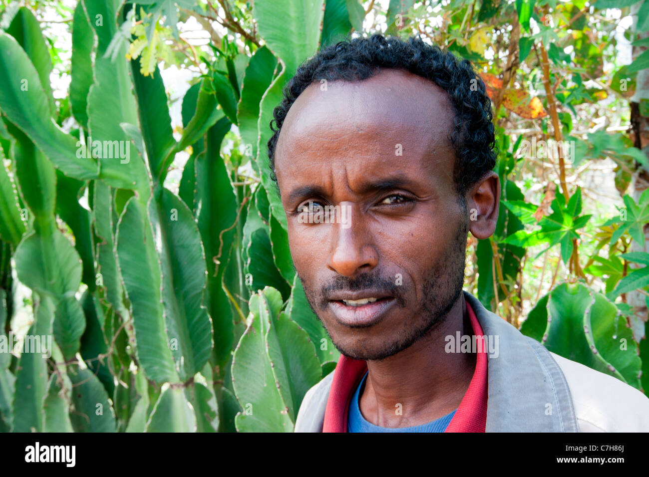 Portrait of a local farmer at Sulula market near Dessie in Northern Ethiopia, Africa. - Stock Image