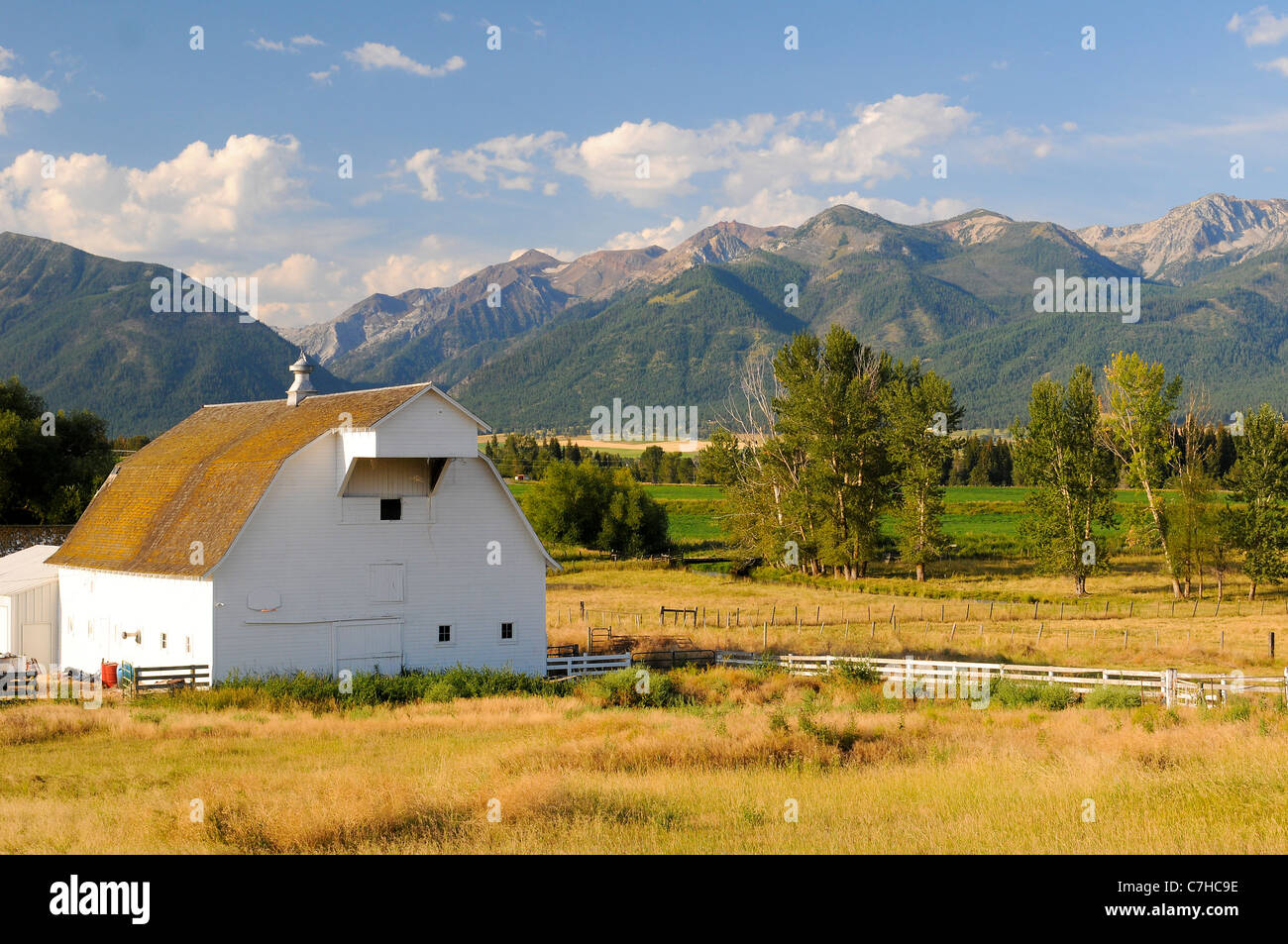 White barn in field near Joseph in Eastern Oregon USA - Stock Image