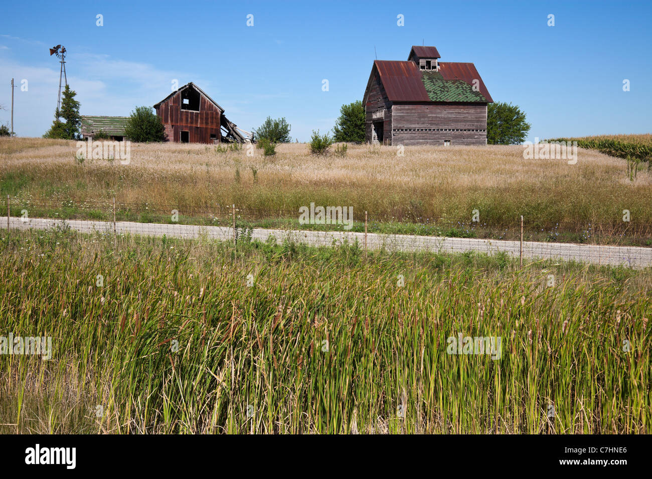 Old farm buildings in the middle of field - Stock Image