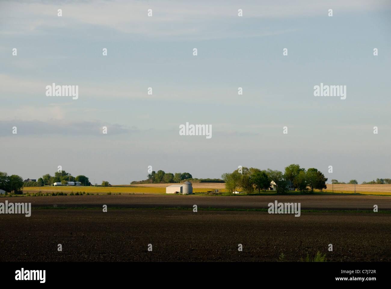 farm buildings and prairie, near Champaign Urbana, Illinois, USA - Stock Image