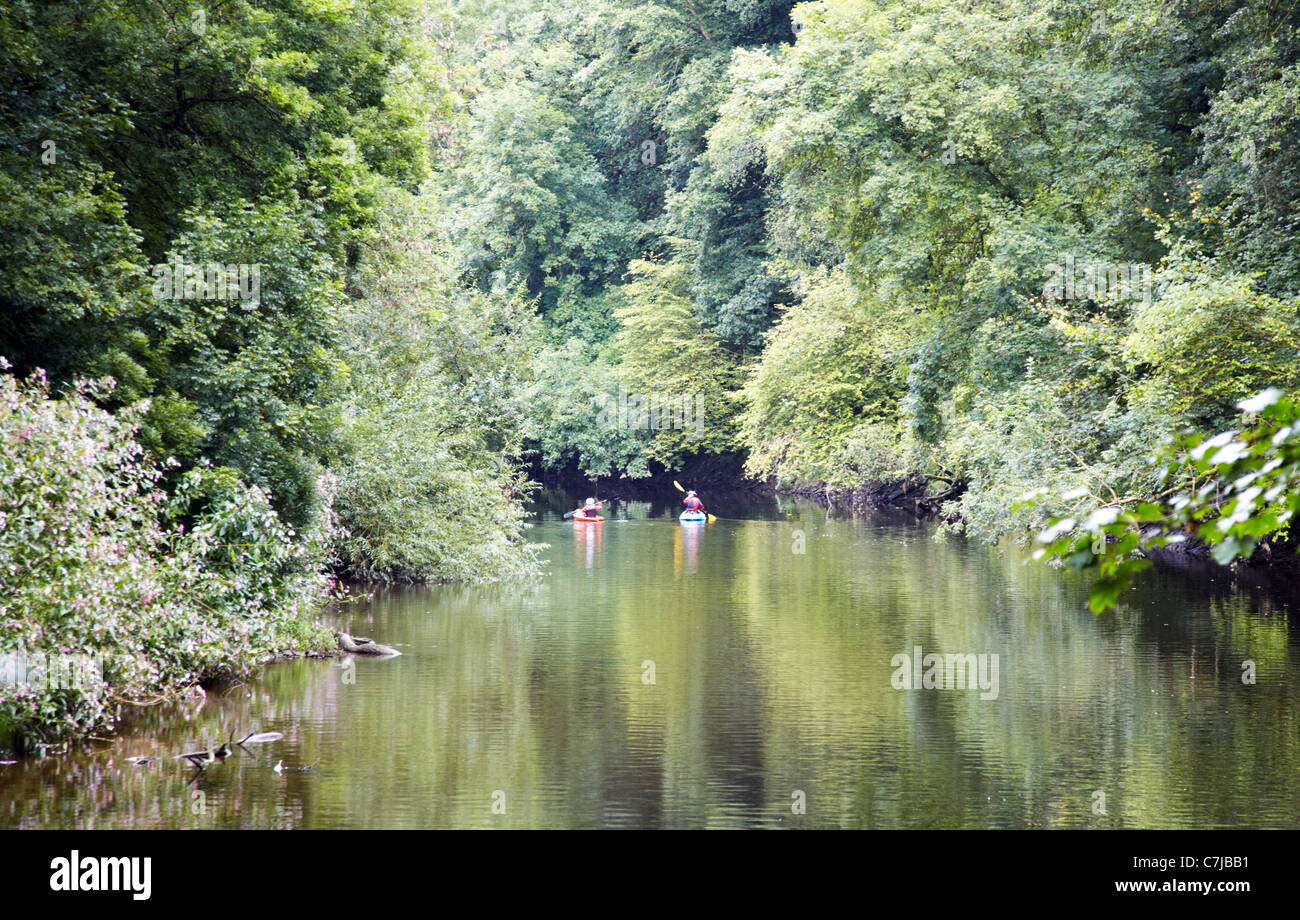 The River Tivy Cilgerran West Wales UK Stock Photo