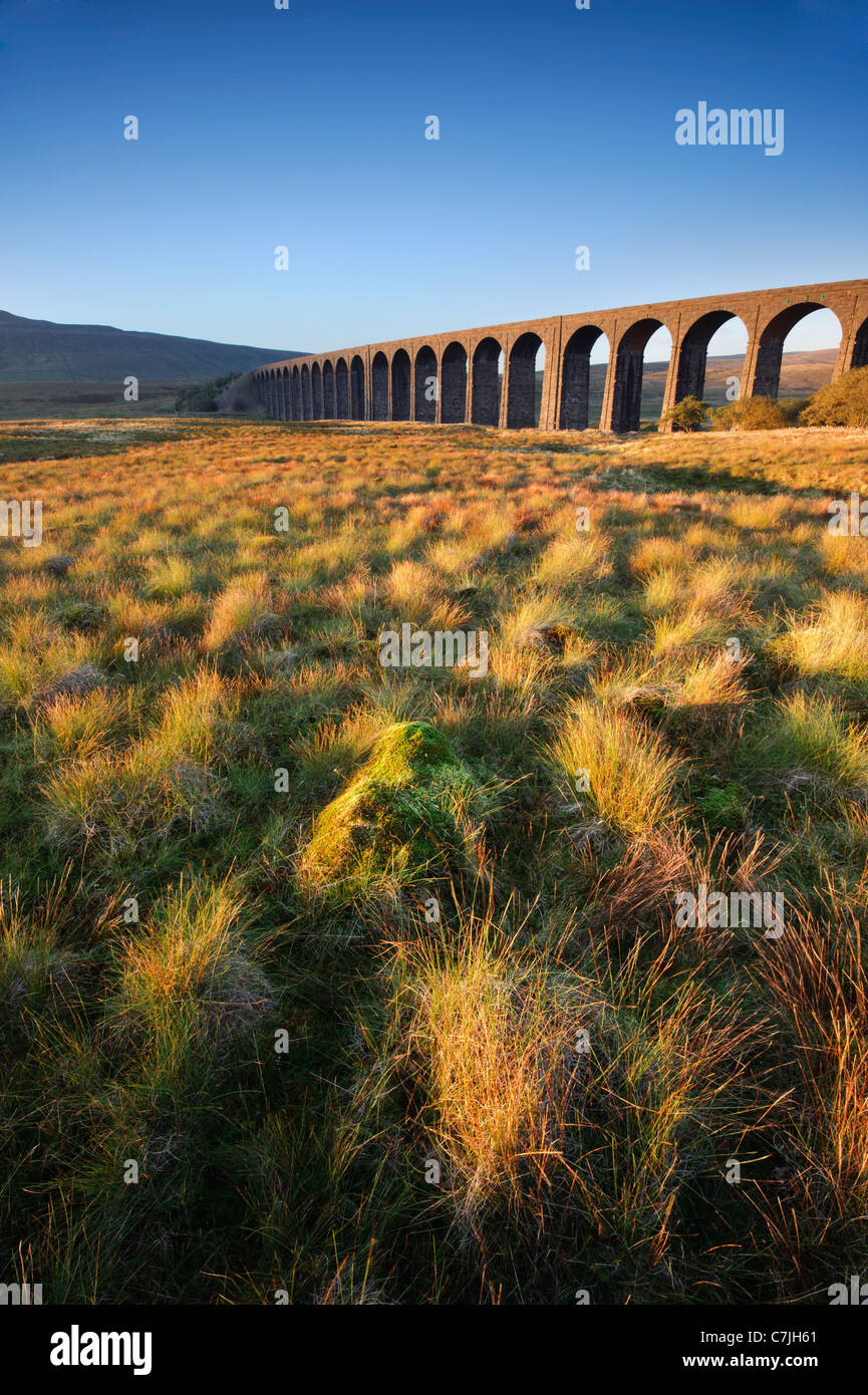 Ribblehead Viaduct, Yorkshire Dales, England, UK - Stock Image