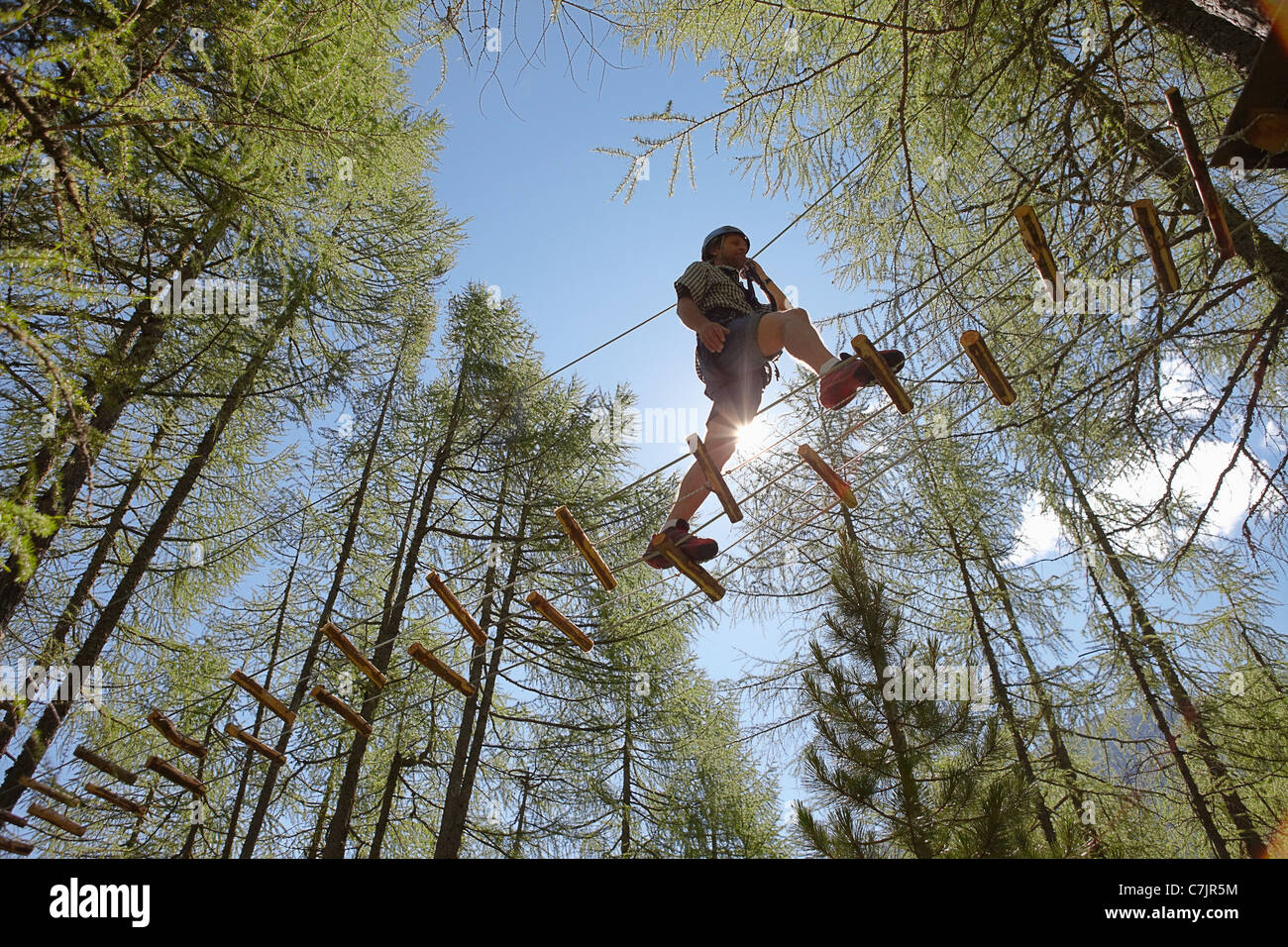 Person doing treetop obstacle course - Stock Image