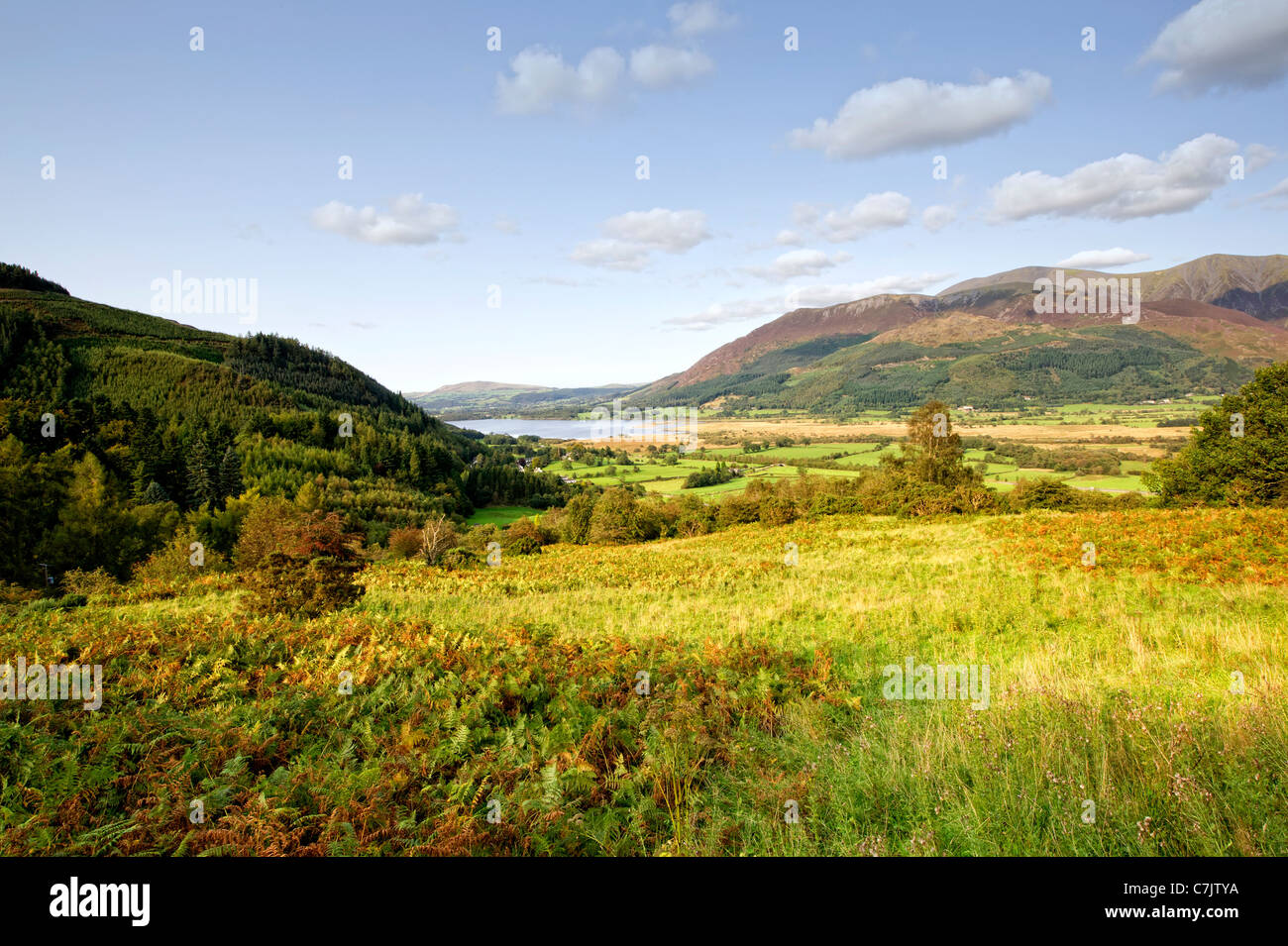 Whinlatter Pass in the Lake District, Cumbria, England with Derwentwater (Lake Derwent) in the distance - Stock Image