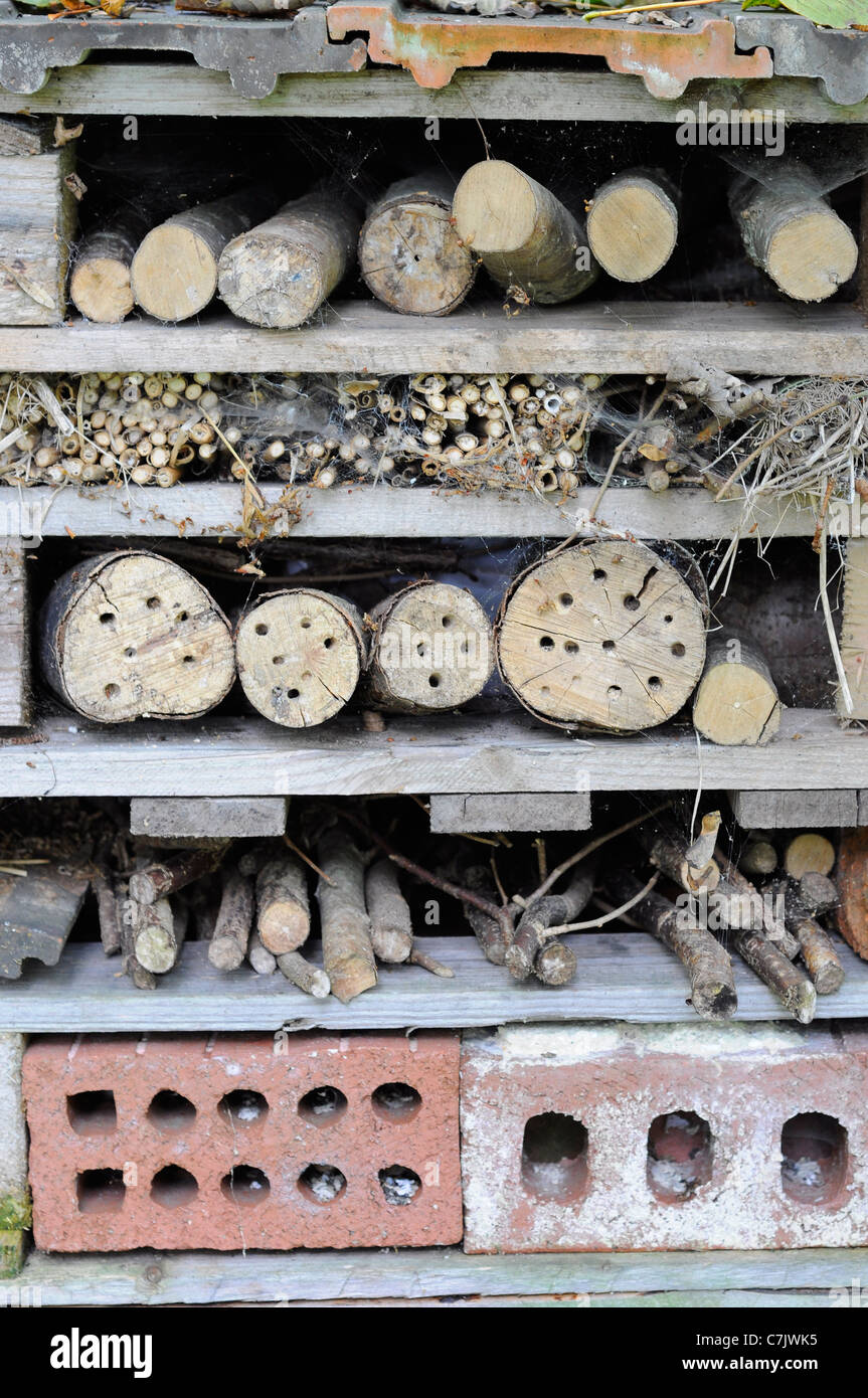 Bug home made with old pallet to attract beneficial insects into a garden - Stock Image