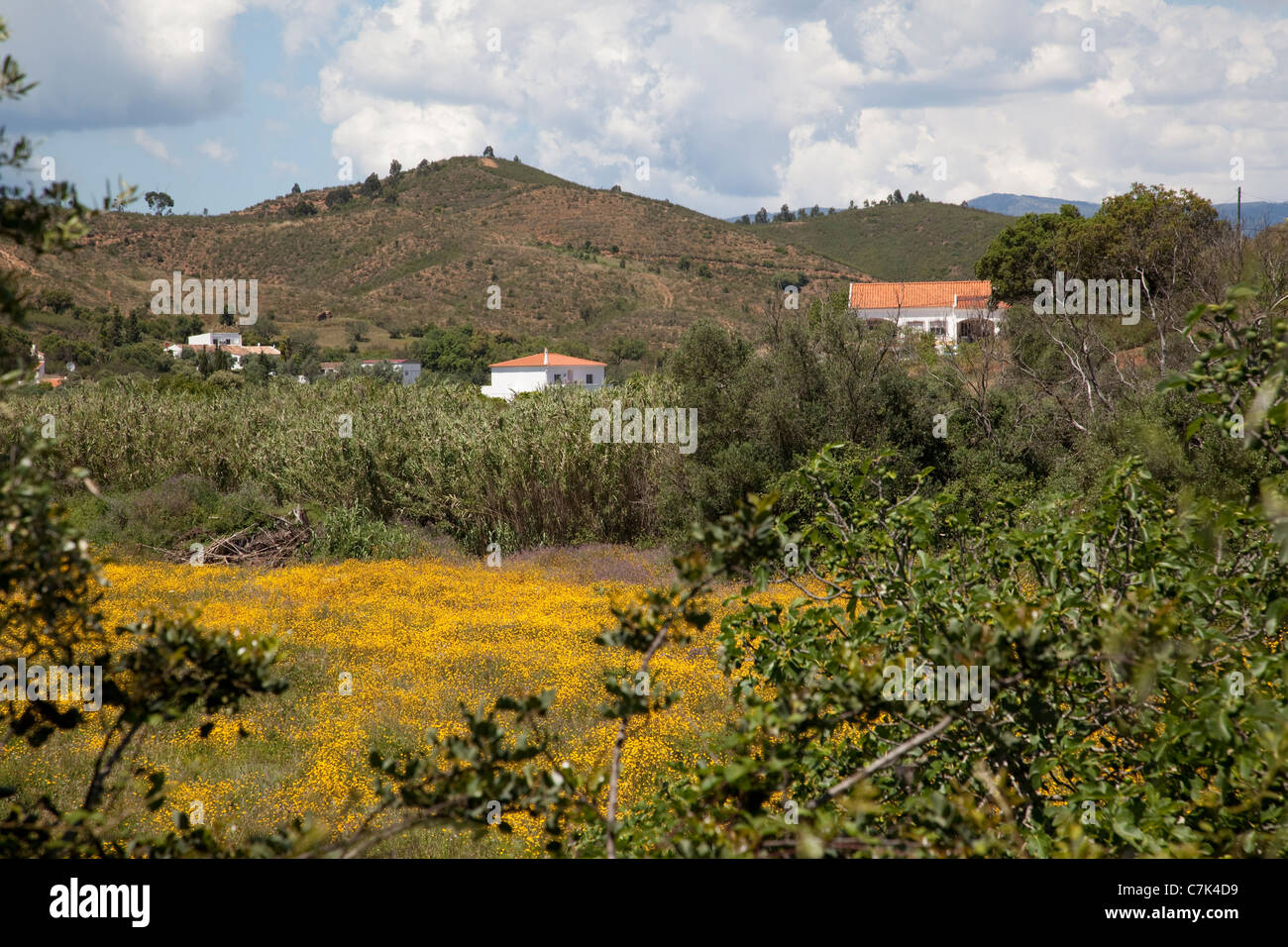 Portugal, Algarve, Near Silves, Countryside - Stock Image