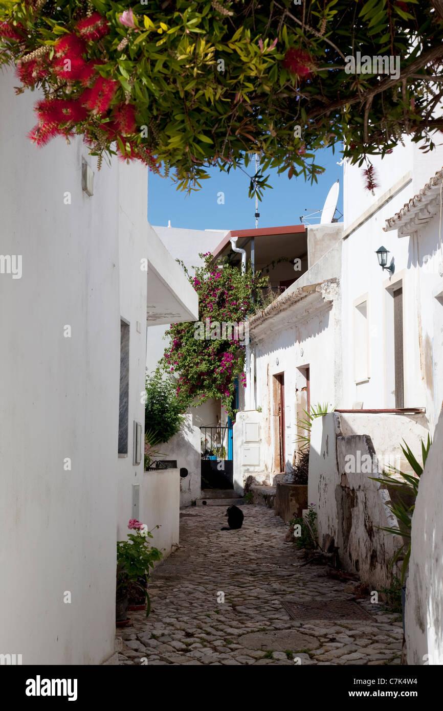 Portugal, Algarve, Alte, Backstreet - Stock Image