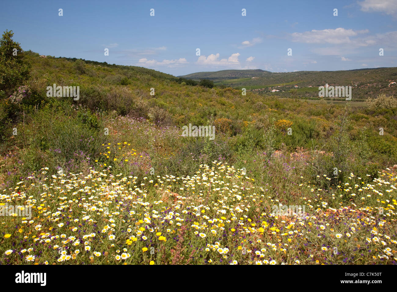 Portugal, Algarve, Near Pademe, Countryside - Stock Image
