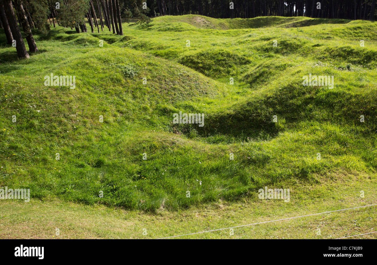 Cratered land in preserved WW1 battlefield at Vimy Ridge, Pas-de-Calais, France - Stock Image