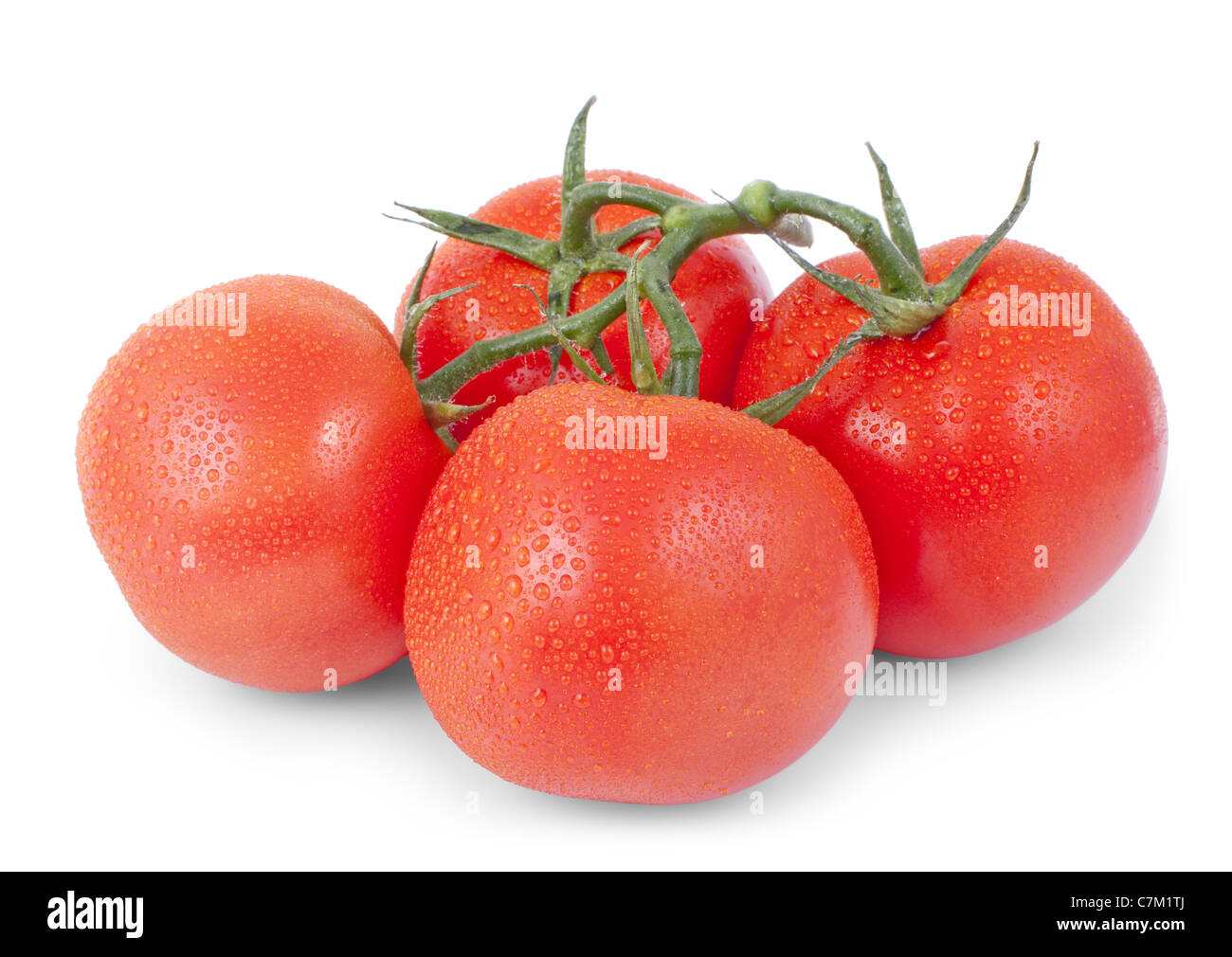bunch of red tomato isolated on a white background - Stock Image