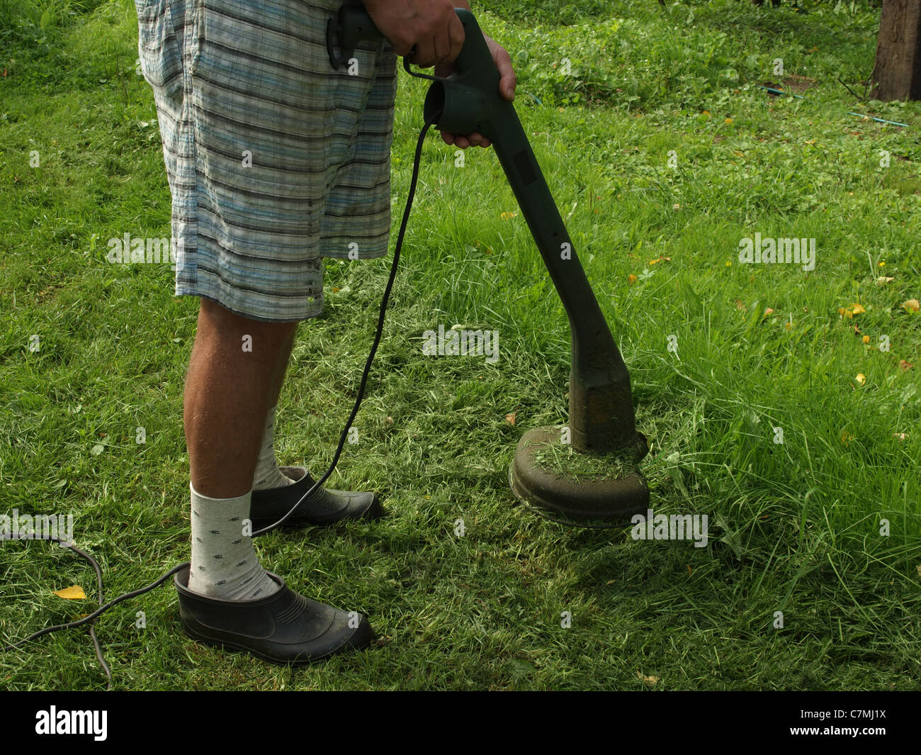 Man mowed the grass in garden - Stock Image
