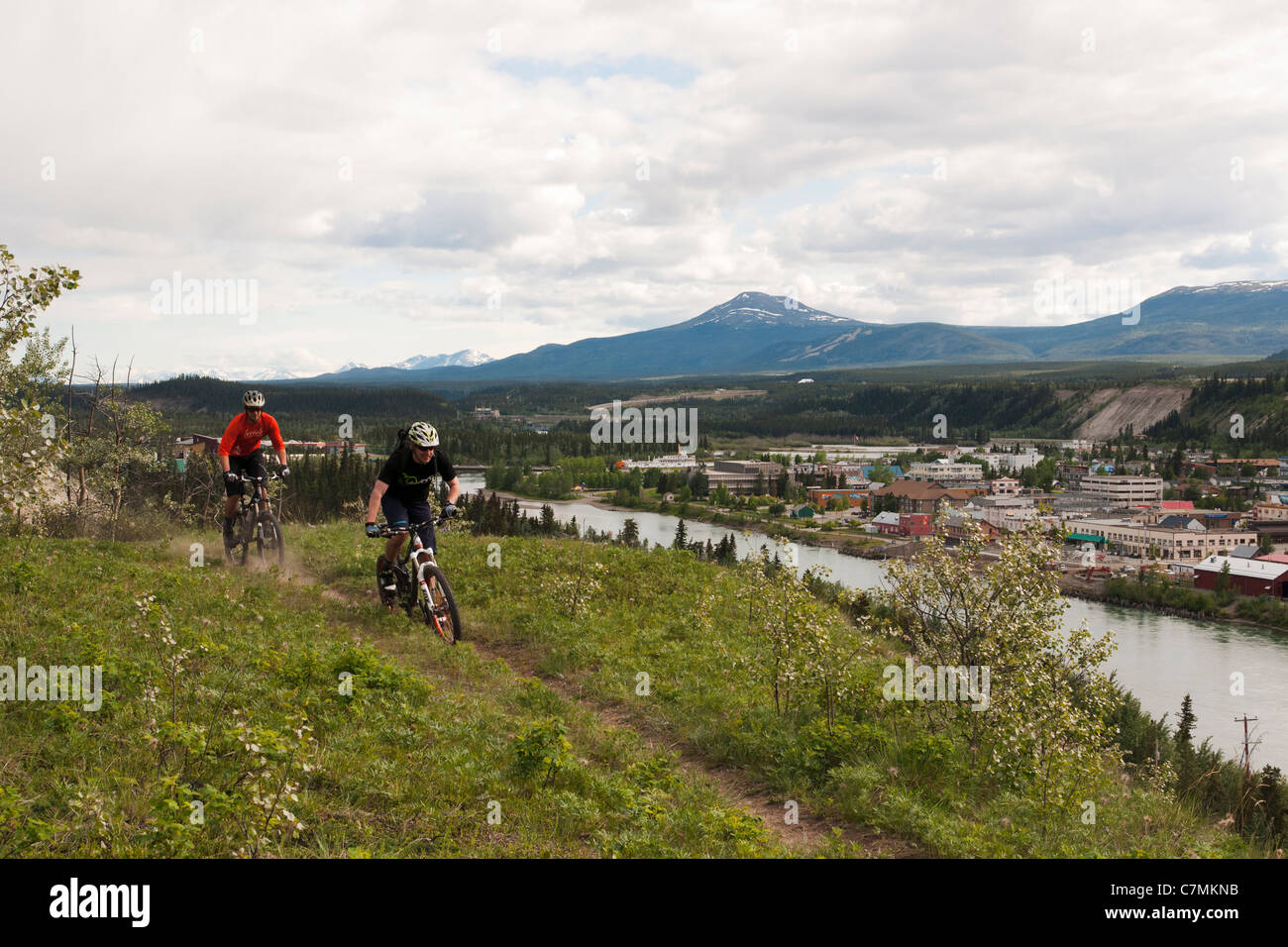 Mountain bikers riding a trail in Whitehorse, Yukon Territory, Canada - Stock Image