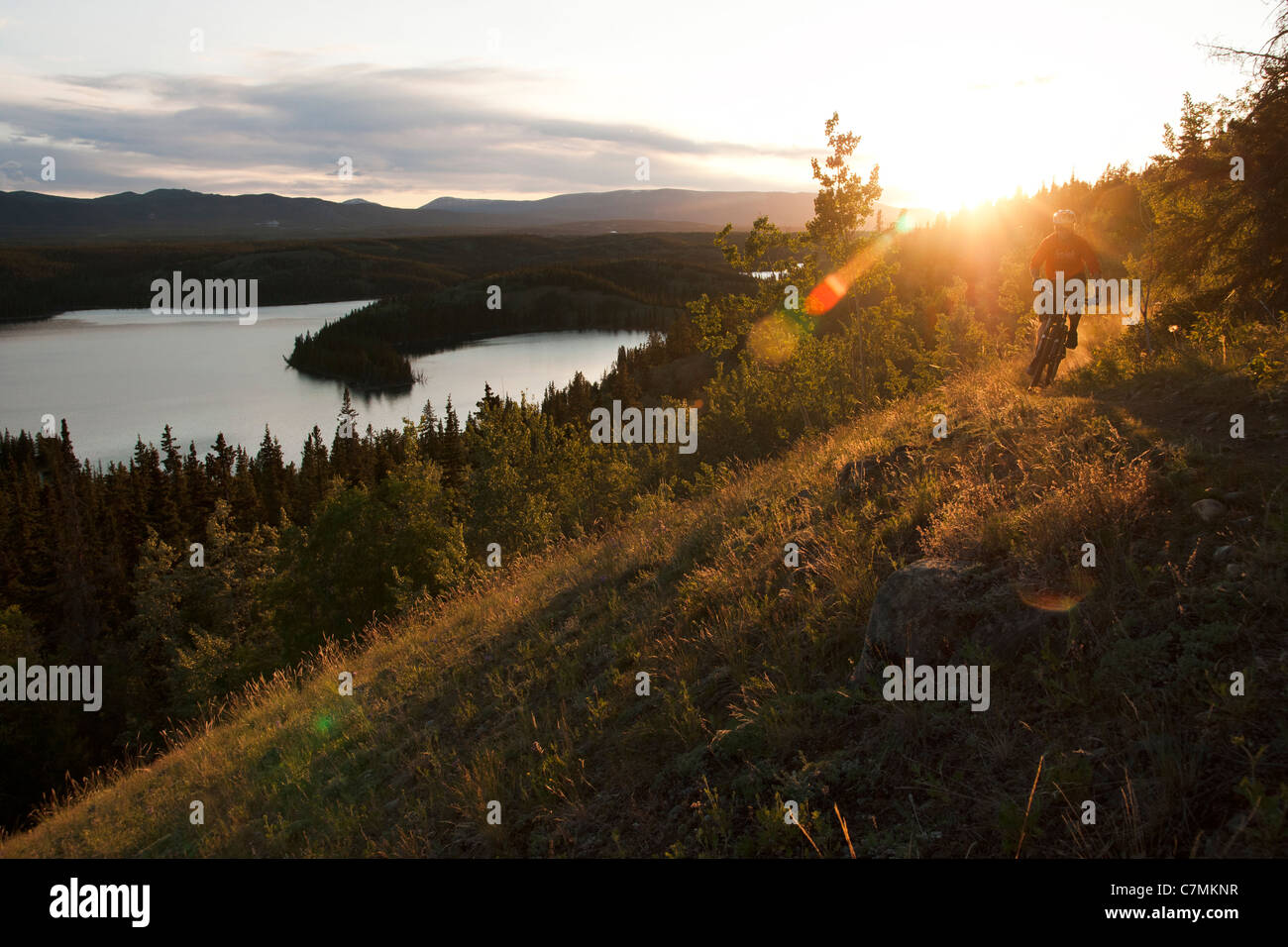 A mountain biker rides a trail under the midnight sun in Whitehorse, Yukon Territory, Canada - Stock Image