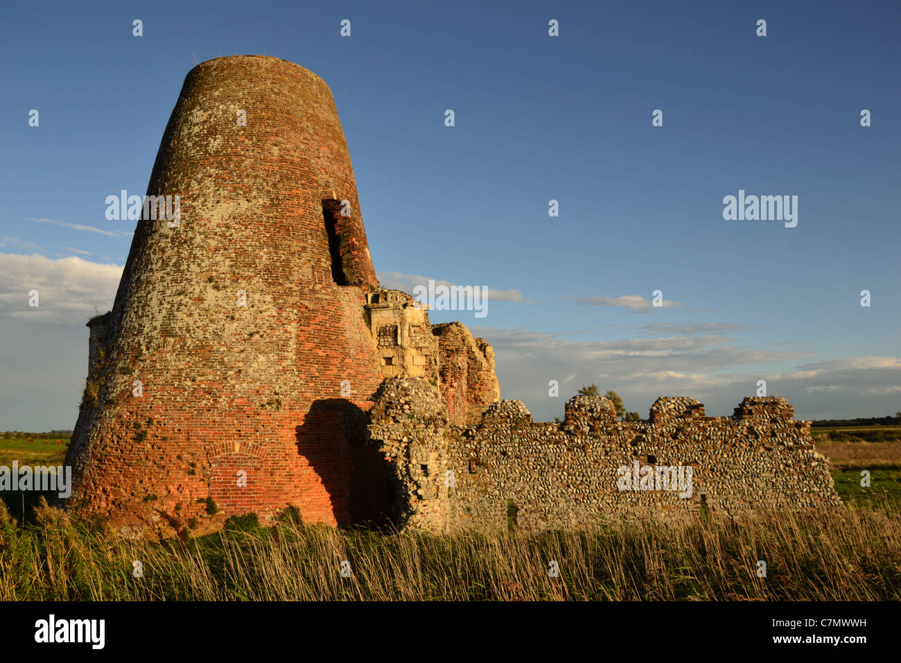 Ruins of St Benets Abbey and windmill beside the River Bure on the Norfolk Broads, lit by warm evening light Stock Photo