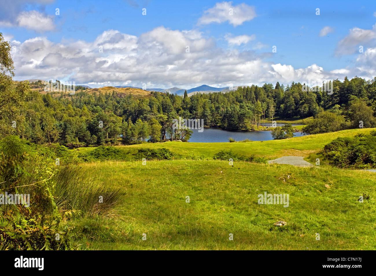 Landscape shot of Tarn Howes Lake, near Keswick in the Lake District - Stock Image