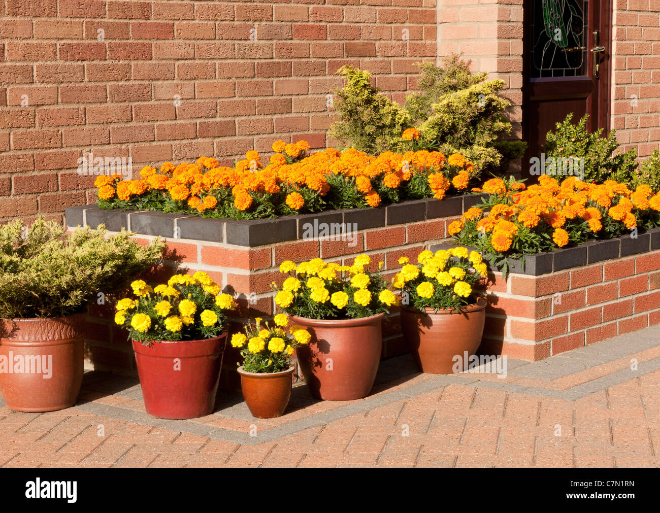 Raised Flower Bed on a Patio with Pots - Stock Image
