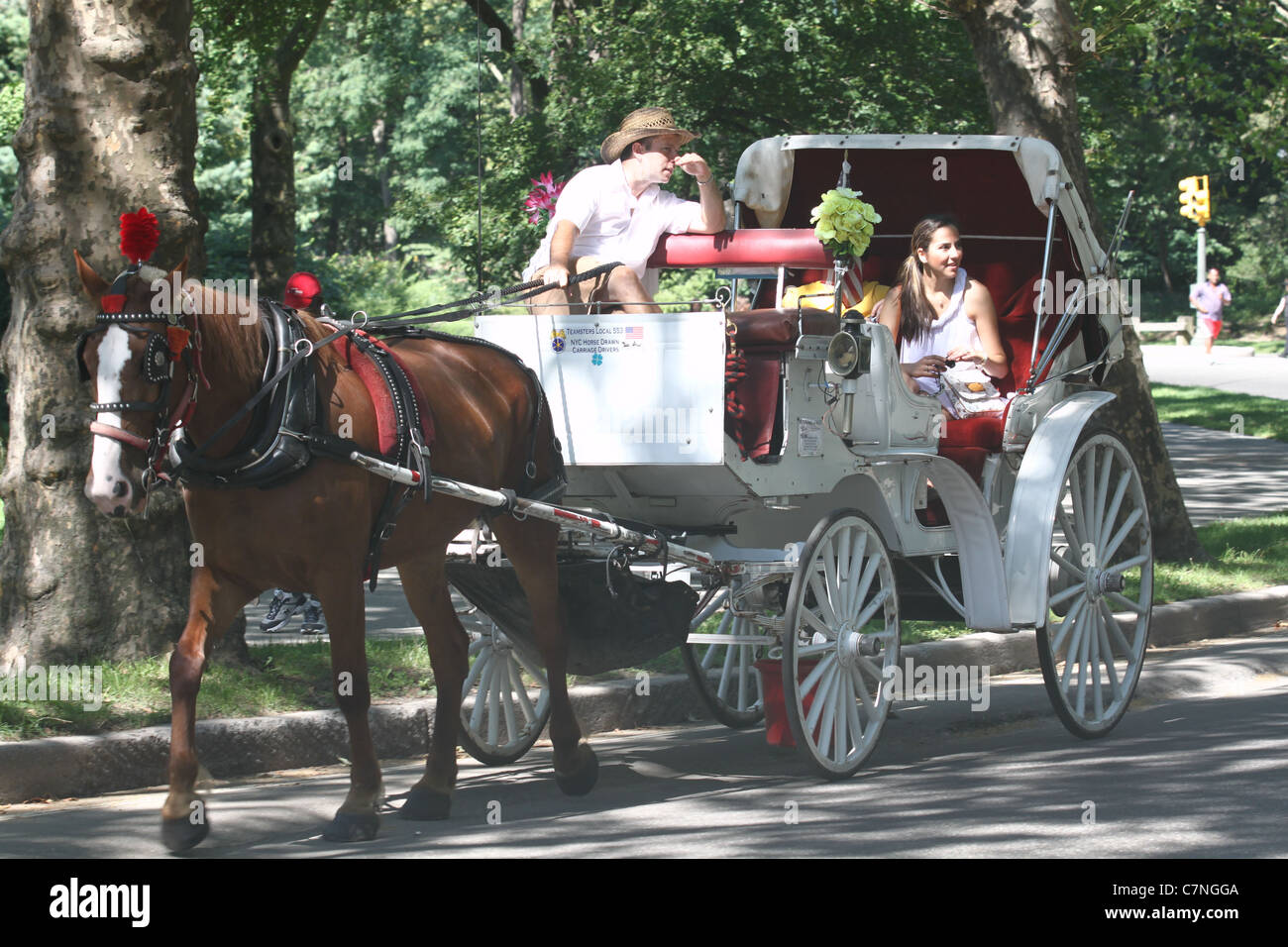 White caleche and brown horse in Central Park Stock Photo