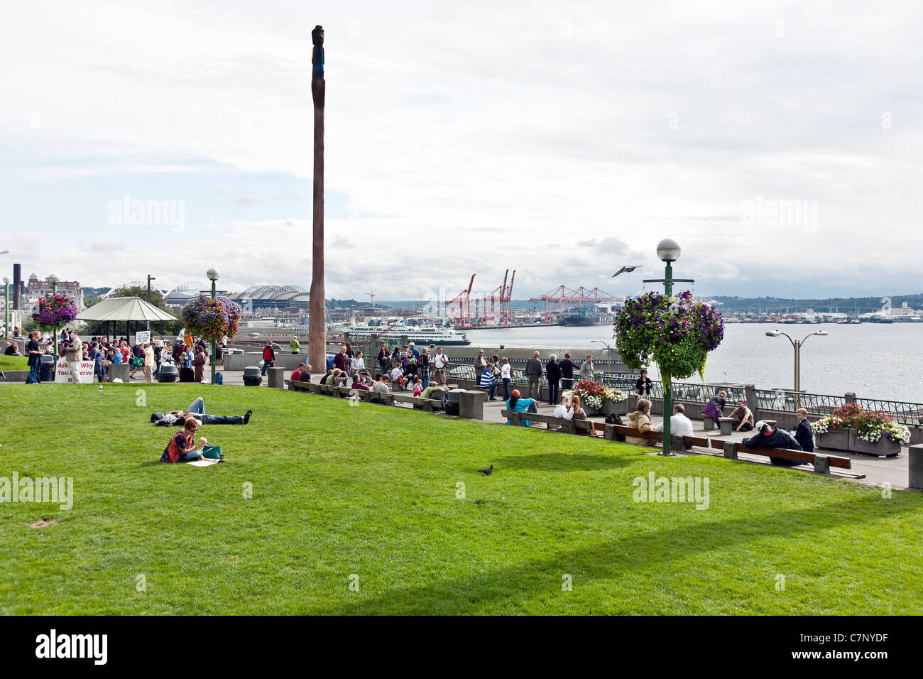 people enjoy raised lawn & esplanade seating with superb view of Elliott Bay & Port of Seattle in Victor - Stock Image
