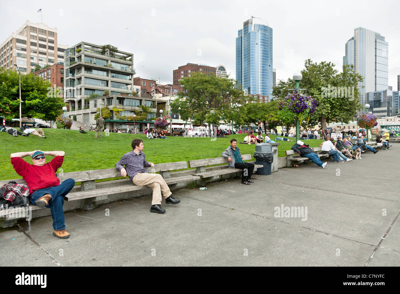 people enjoy sitting & lying on row of benches or raised lawn area of Victor Steinbrueck Park against backdrop - Stock Image