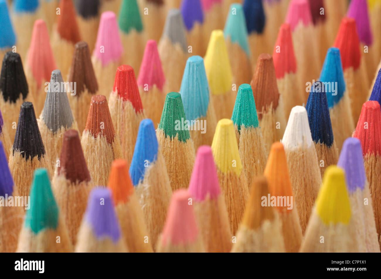 Colored Pencils Macro - Stock Image