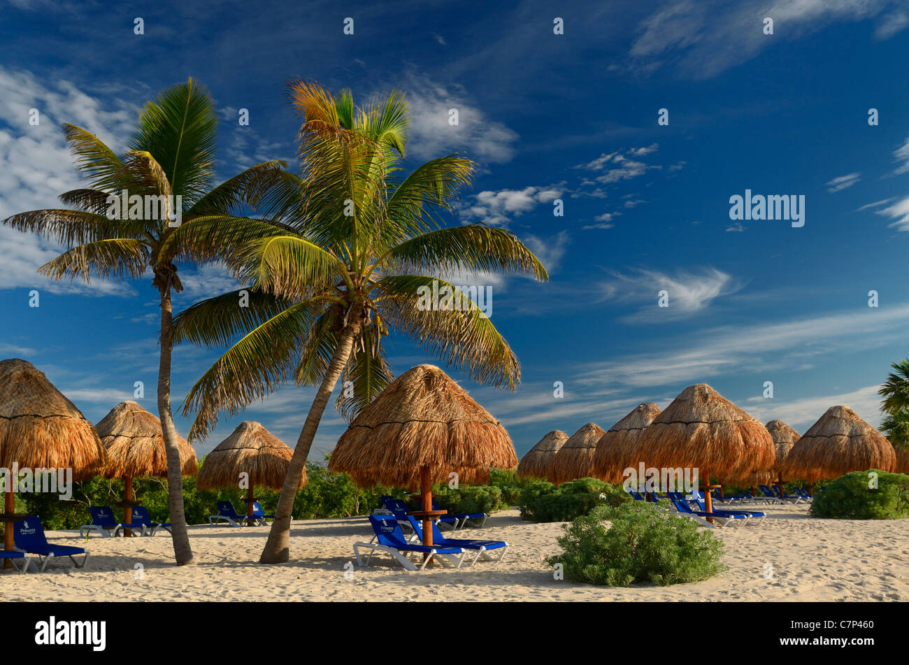 Empty Mayan Riviera beach lounge chairs with thatched umbrellas and coconut palm trees Mexico - Stock Image