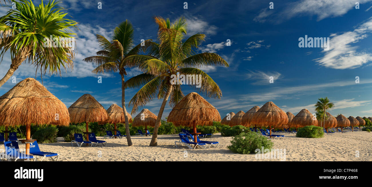 Panorama of empty Mayan Riviera beach with thatched umbrellas and coconut palm trees Mexico - Stock Image