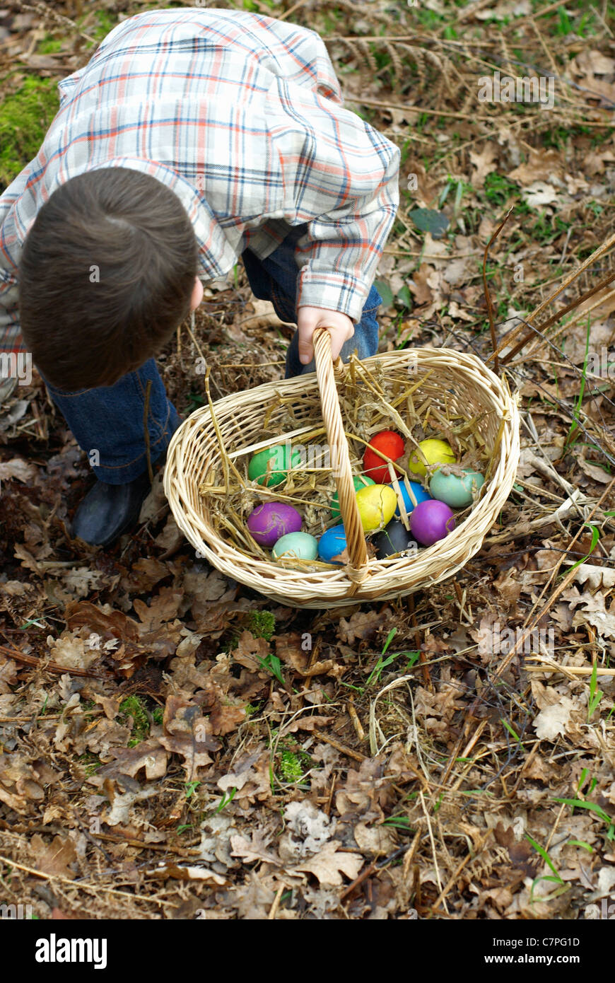 Boy collecting Easter eggs Stock Photo