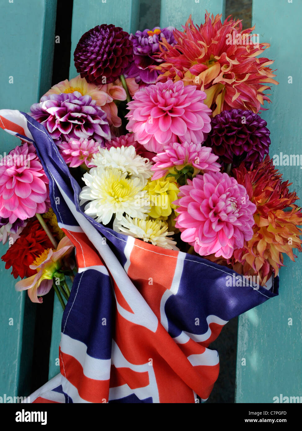 A bunch of dahlia flowers in a union jack flag - Stock Image