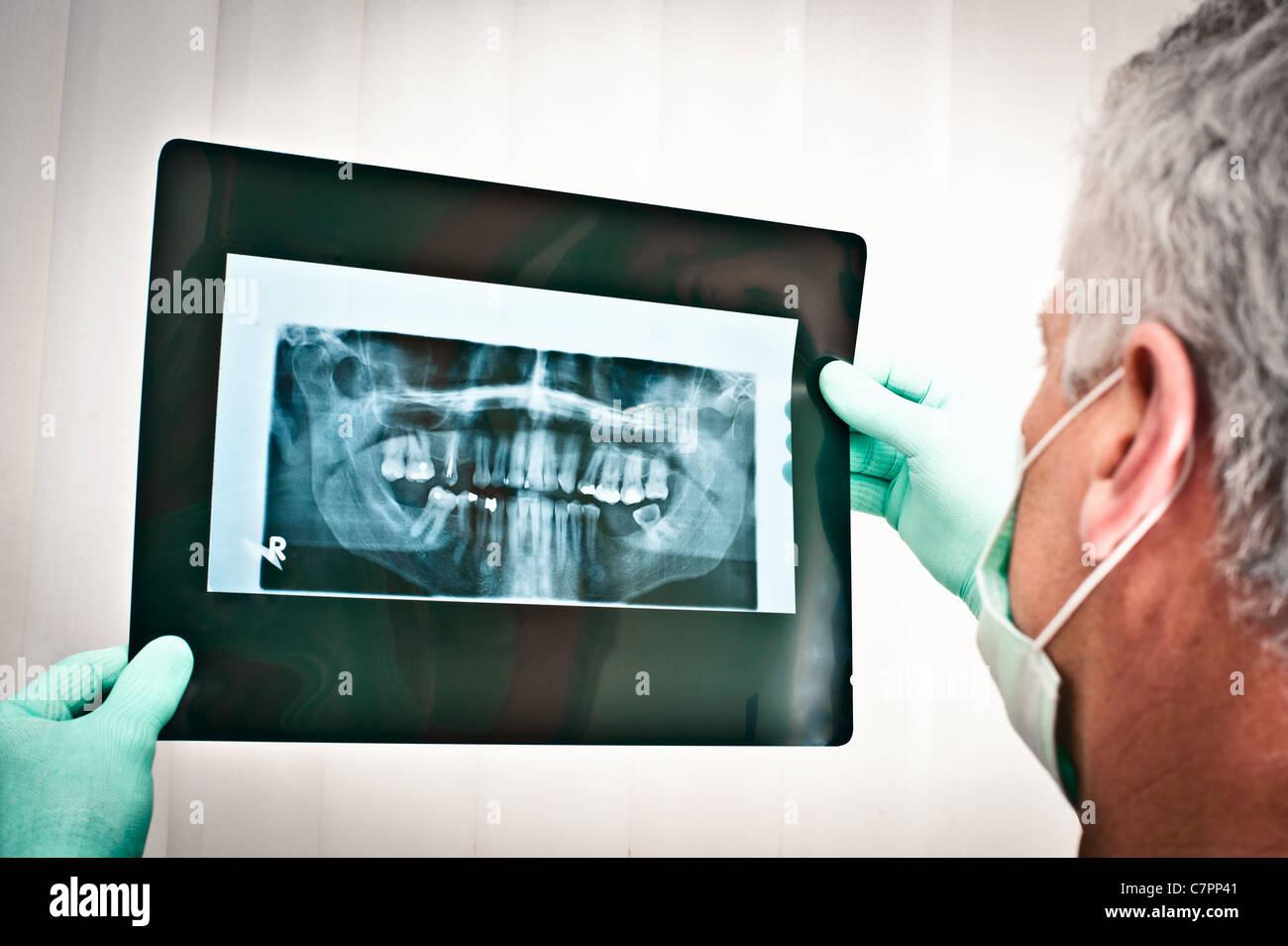 Dentist examining dental x-rays - Stock Image