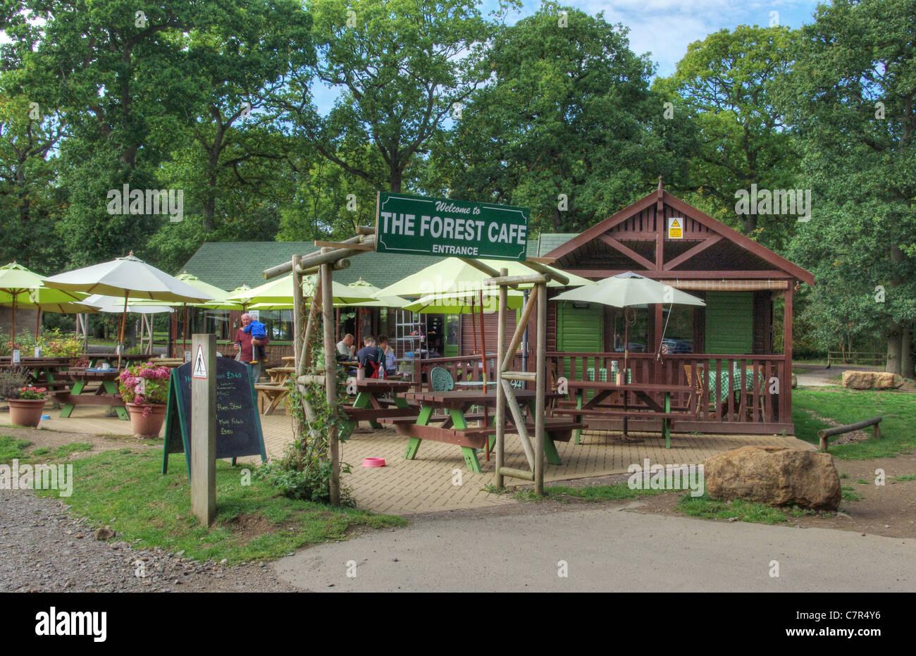 Is Bridge Cafe Open