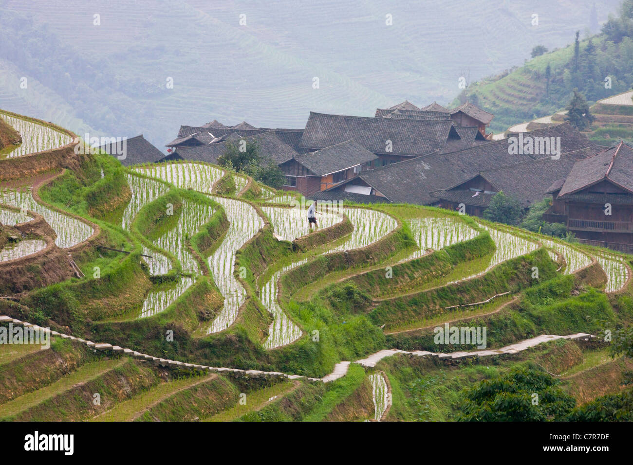 Village houses with rice terraces in the mountain, Longsheng, Guangxi, China - Stock Image