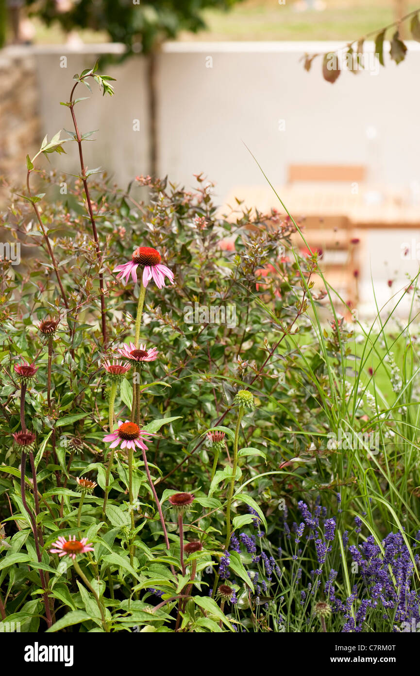 Heathers in Harmony small garden at 2011 Hampton Court Palace Flower Show, UK - Stock Image