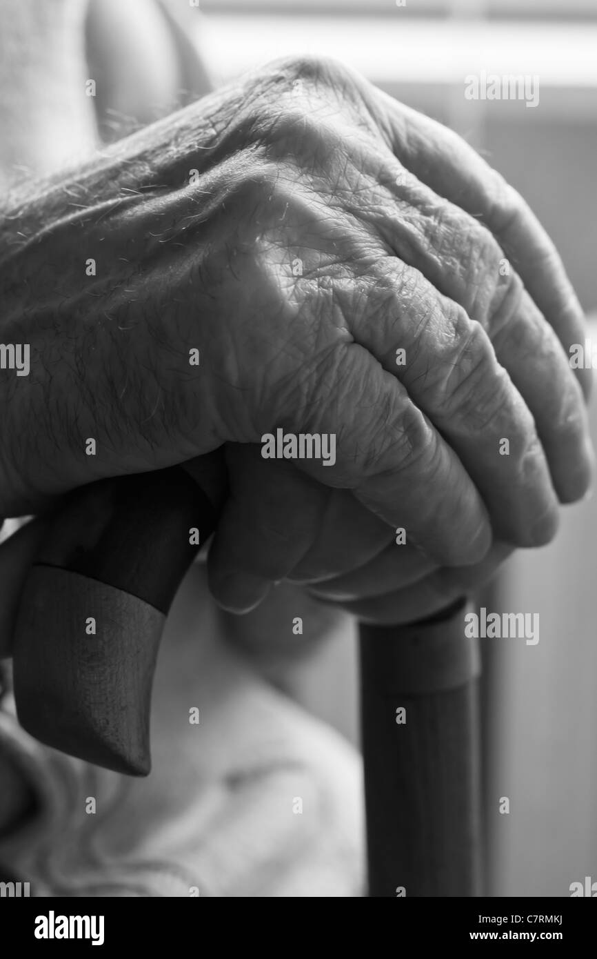 Hands of a senior man holding a cane - Stock Image