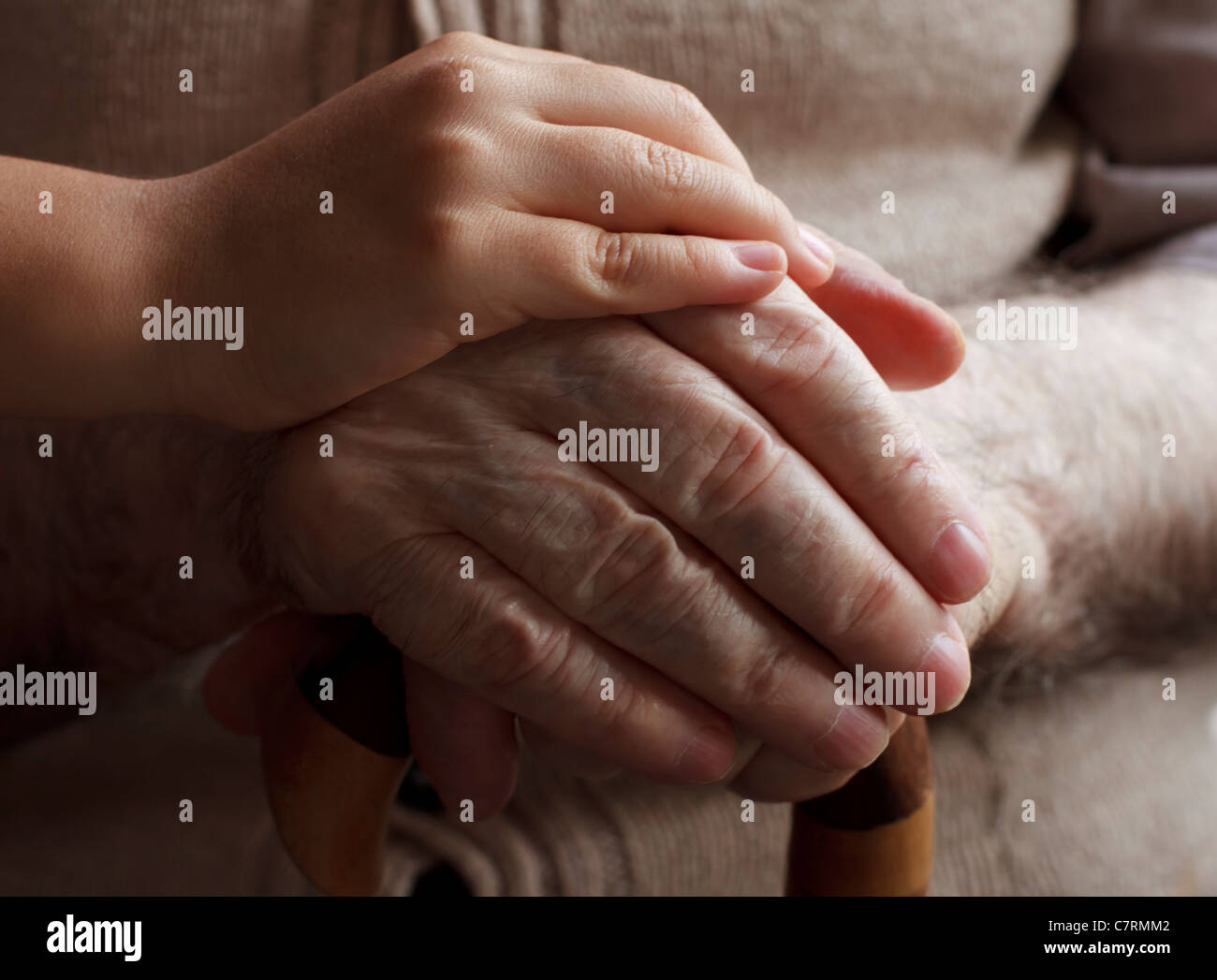 granddaughter hand holding his grandfather hands - Stock Image