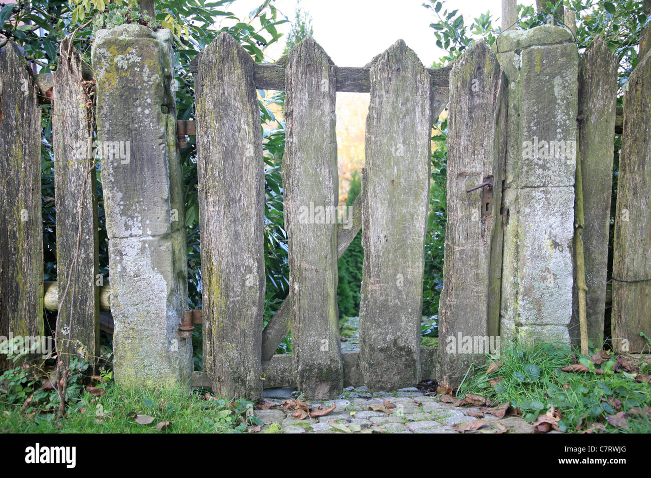 Old weathered garden gate and fence - Stock Image