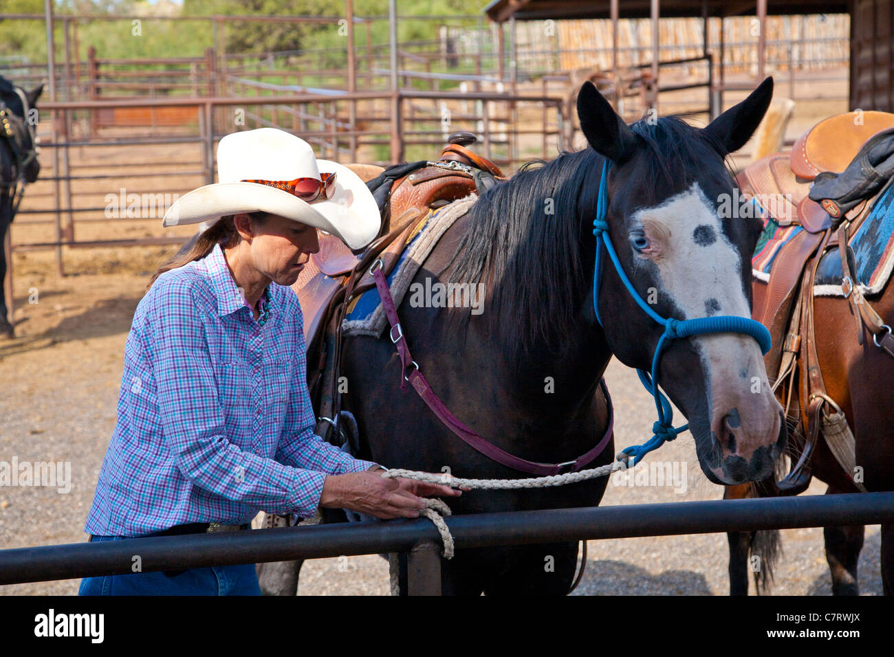 Cowgirl with horse - Stock Image