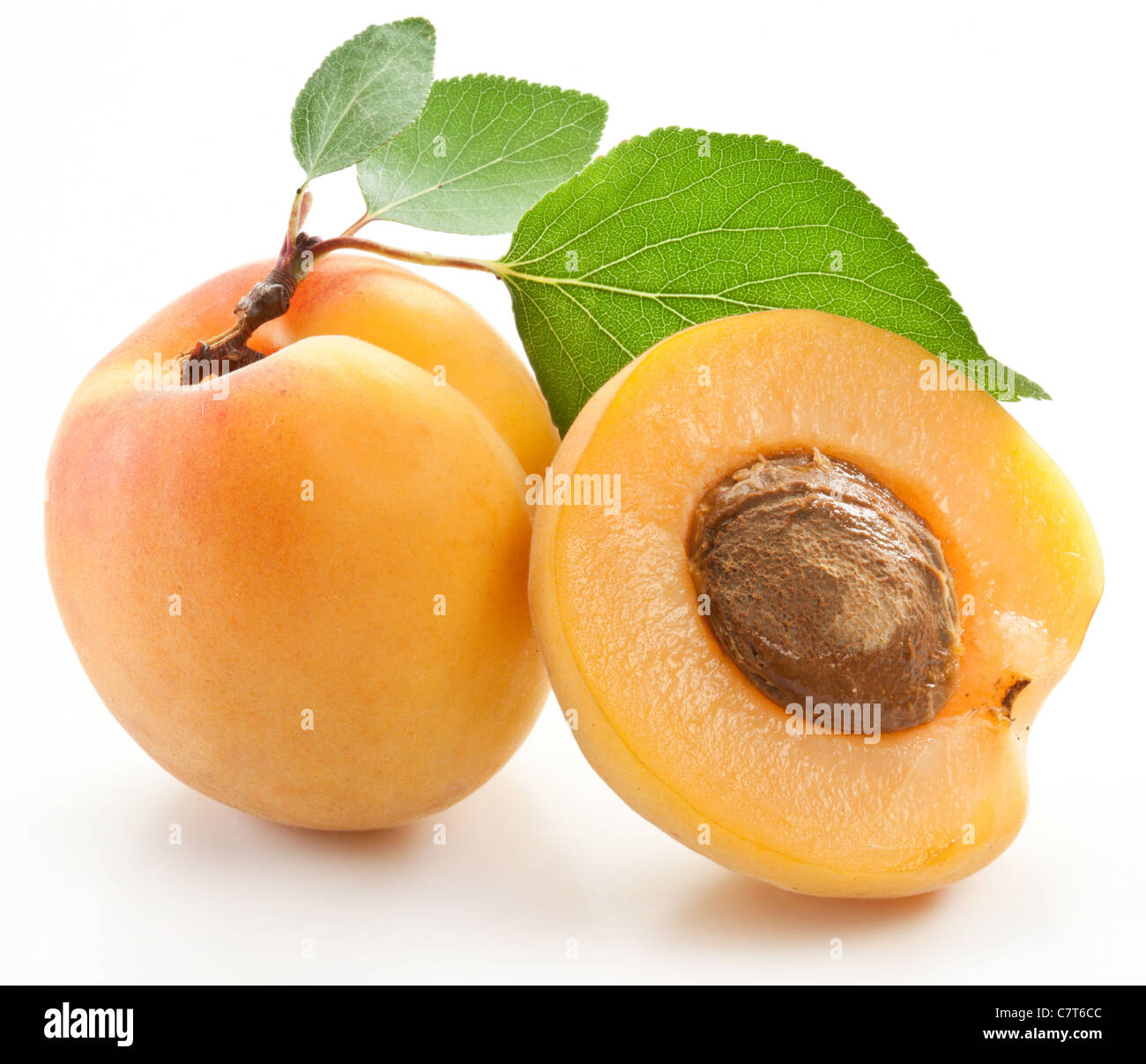 Apricots with leaves on a white background. - Stock Image