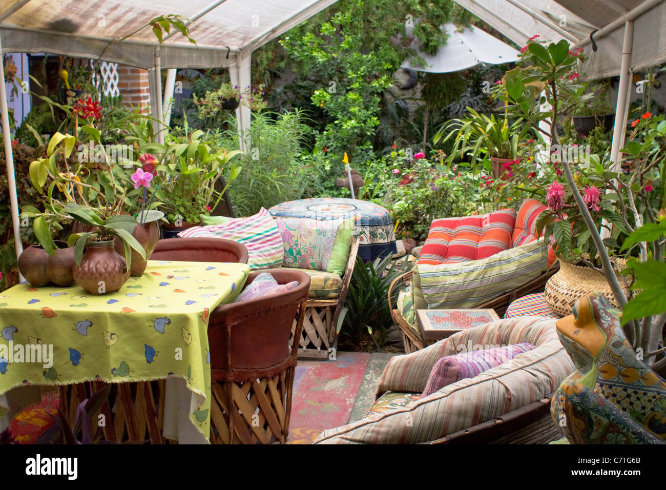 Potted Plants Patio Garden Indoor Outdoor Lifestyle Ajijic Stock Photo Alamy