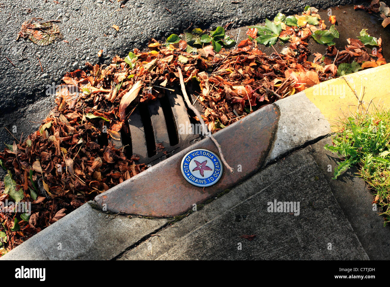 Drains to the ocean - Stock Image