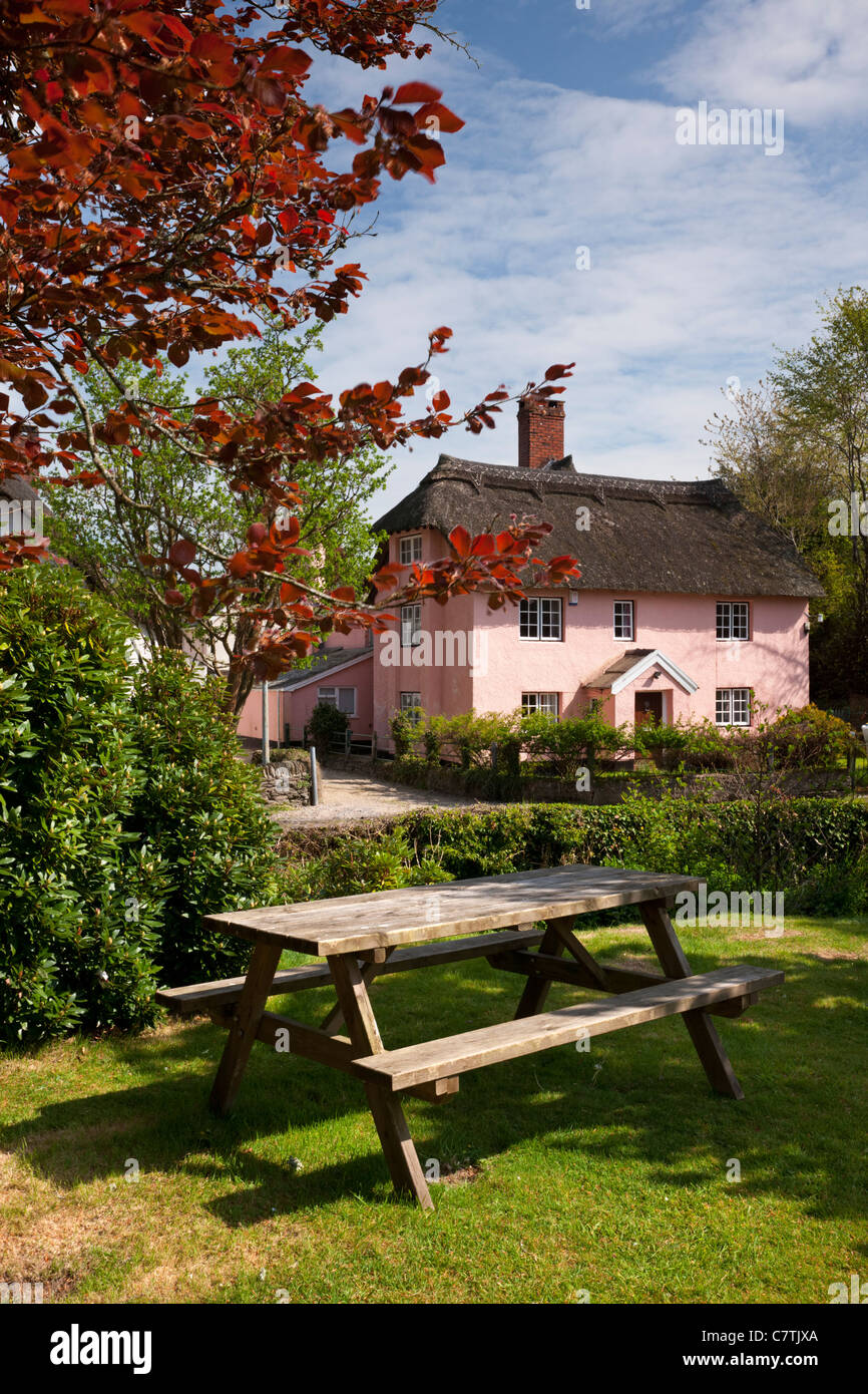 Thatched cottage in picturesque Winsford, Exmoor - Stock Image