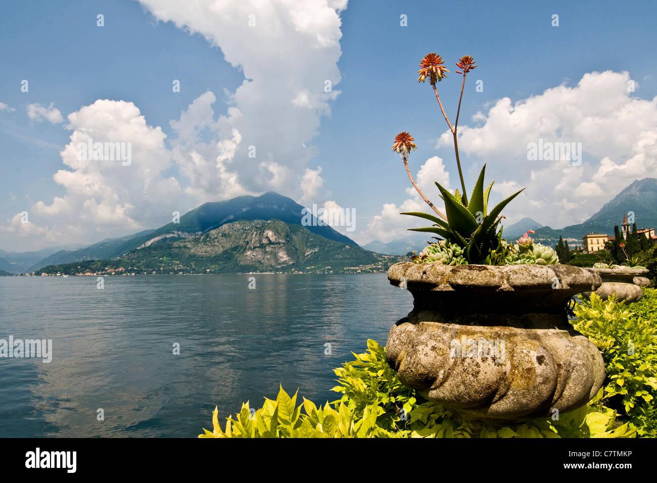 Italy, Lombardy, Lake Como, Varenna, Villa Monastero, garden - Stock Image