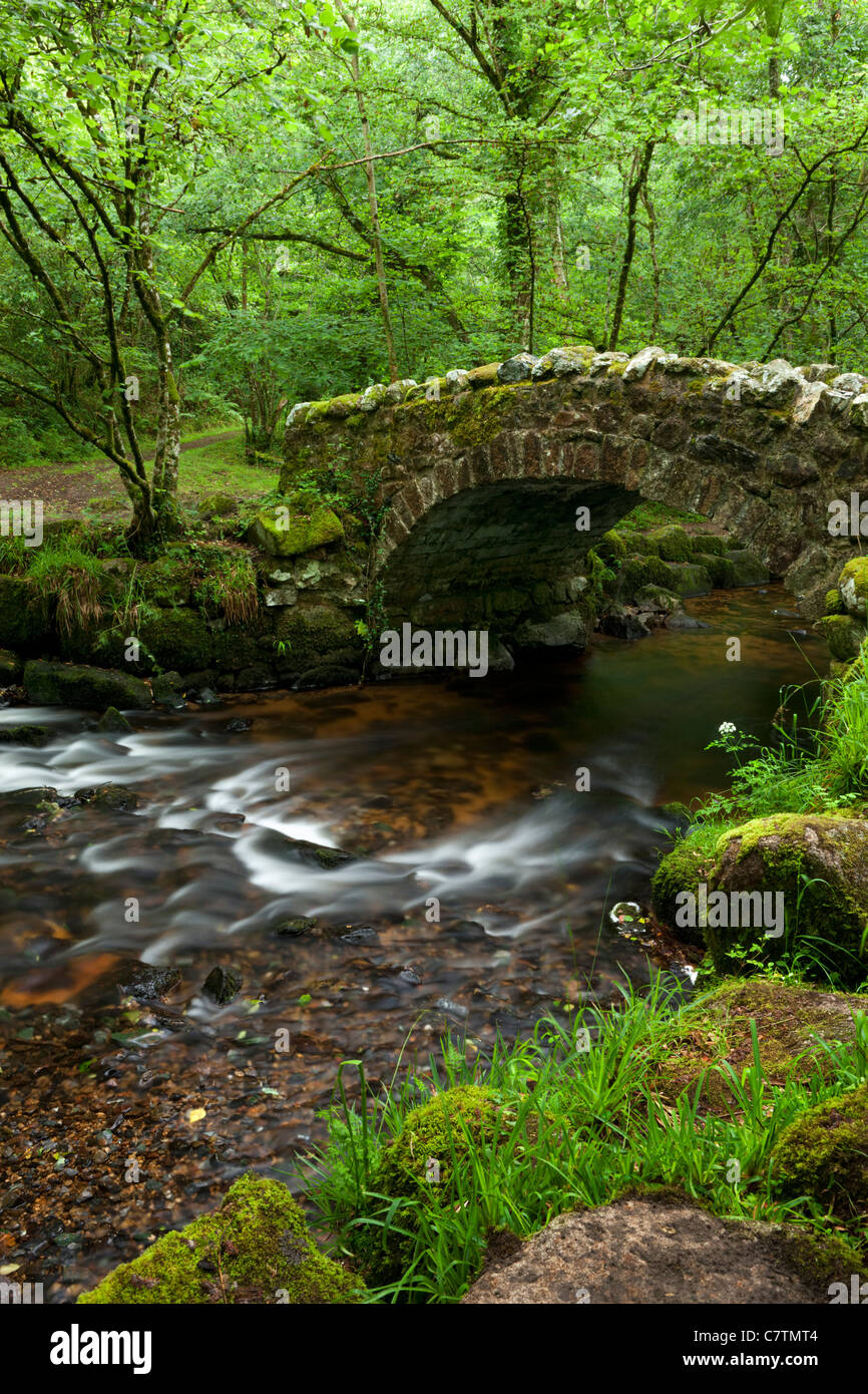 Ancient stone bridge crossing the River Bovey in Hisley Wood, Dartmoor, Devon, England. Summer (July) 2011. - Stock Image