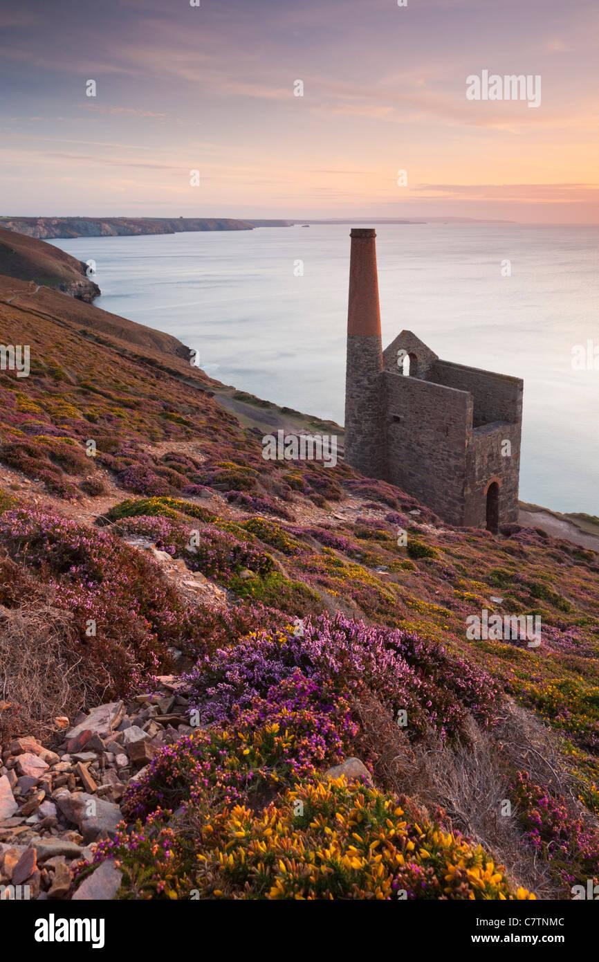 Towanroath Engine House on the clifftops near St Agnes, Cornwall, England. Summer (August) 2011. - Stock Image